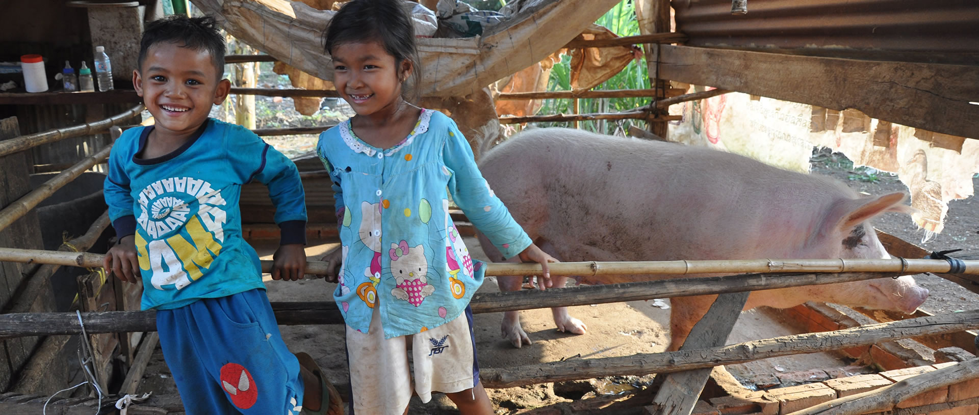 hope in the form of piglets in Cambodia banner