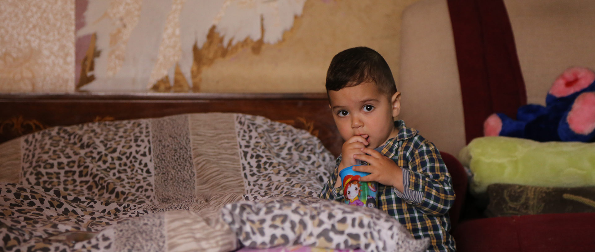 from hopeless and abandoned to thriving in Armenia banner